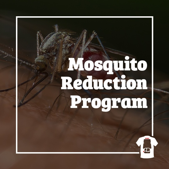mosquito, town and country, town and country pest solutions, pest, pests, rochester, syracuse, buffalo, rochester ny, syracuse ny, buffalo ny, new york, western ny, rochester exterminators, syracuse exterminators, buffalo exterminators, bed bugs, fabry, matt fabry, extermination, hire the pros, friendly, trustworthy