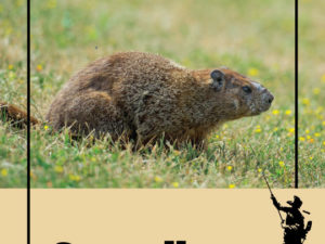 Real-Life Horrors Of A Groundhog Invasion In Upstate New York
