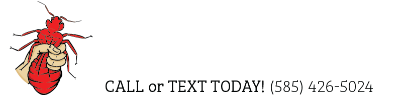 Town and Country Pest Solutions Inc.